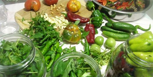 Kışa Hazırlık- Sivri Biber - Salatalık, Acur - Yeşil Domates - Taze Fasulye Turşusu