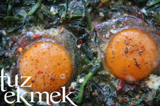 Ispanaklı Yumurta